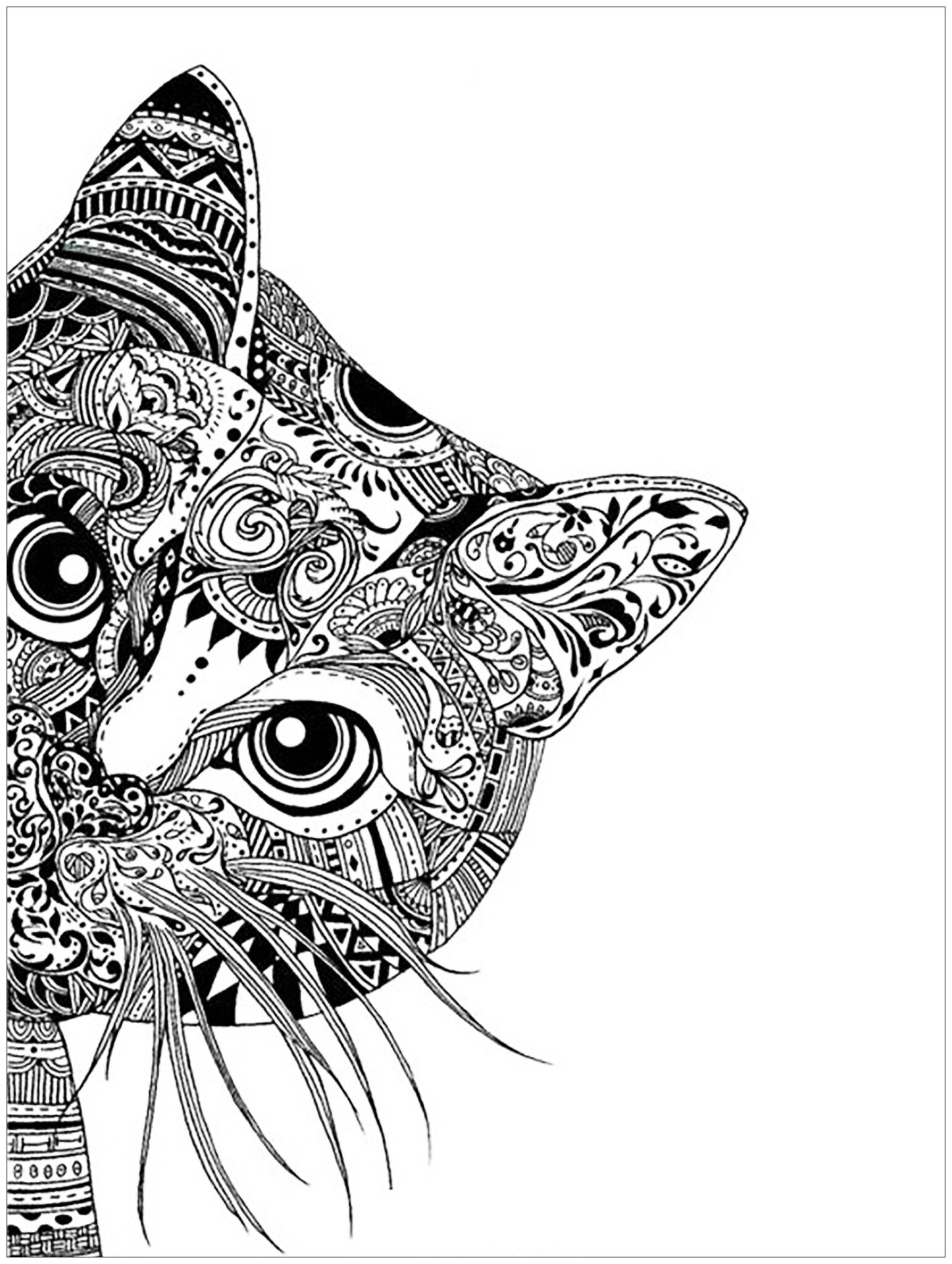 Cats coloring pages for adult 2