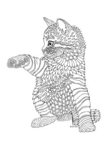 Cats coloring pages for adult 3