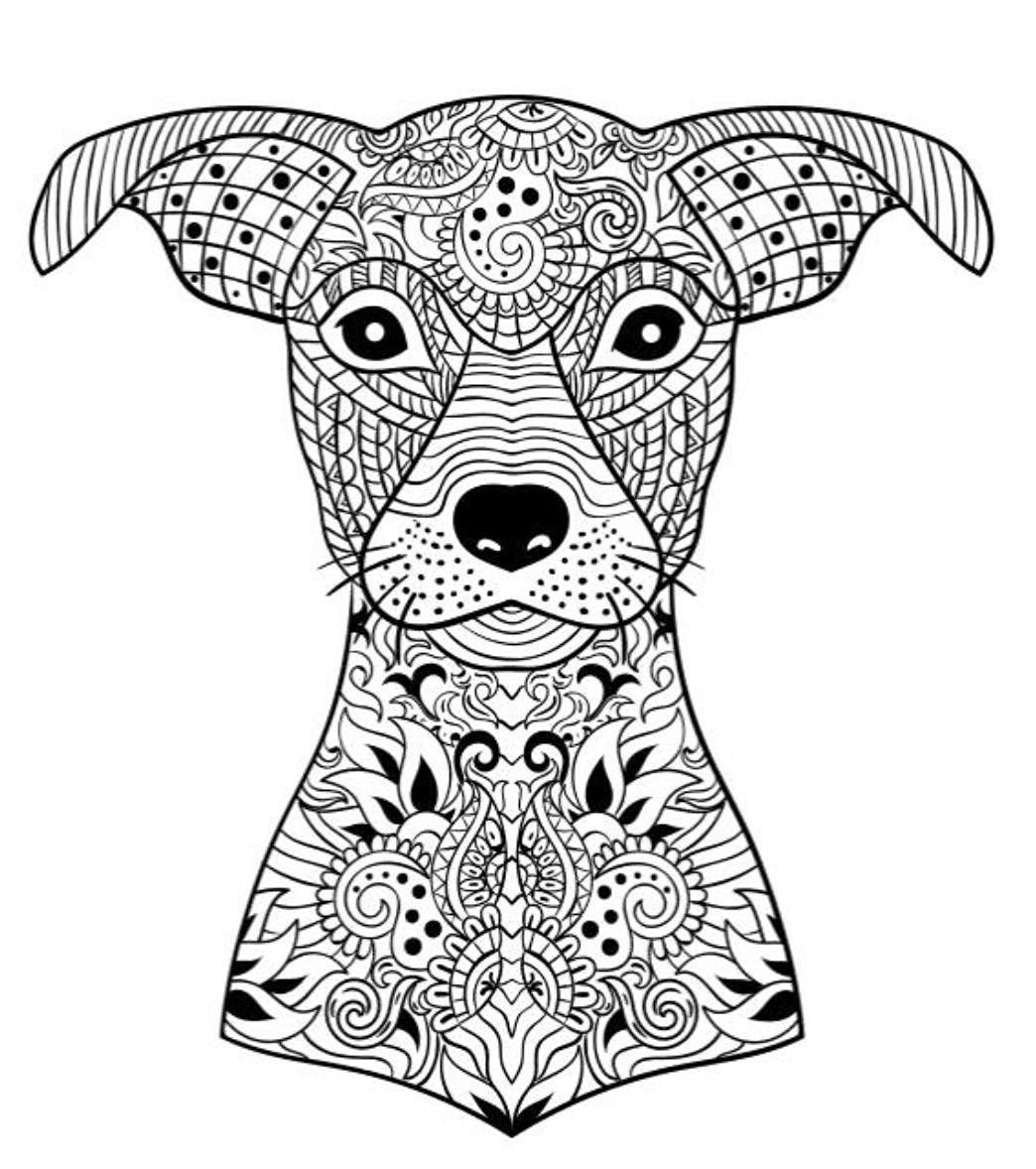Dog Coloring Book | AdultcoloringbookZ
