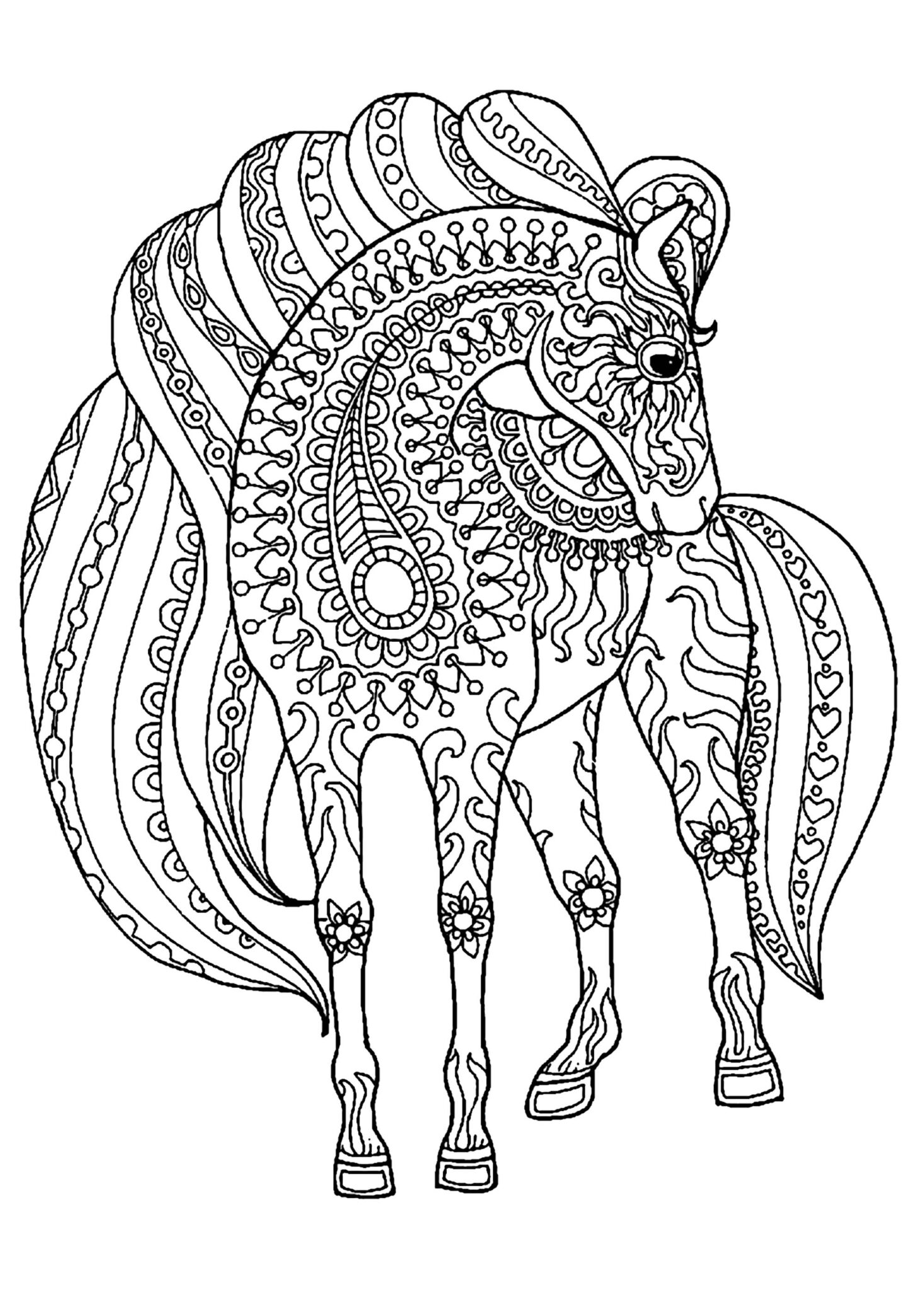 Horse Coloring Pages for Adults 1