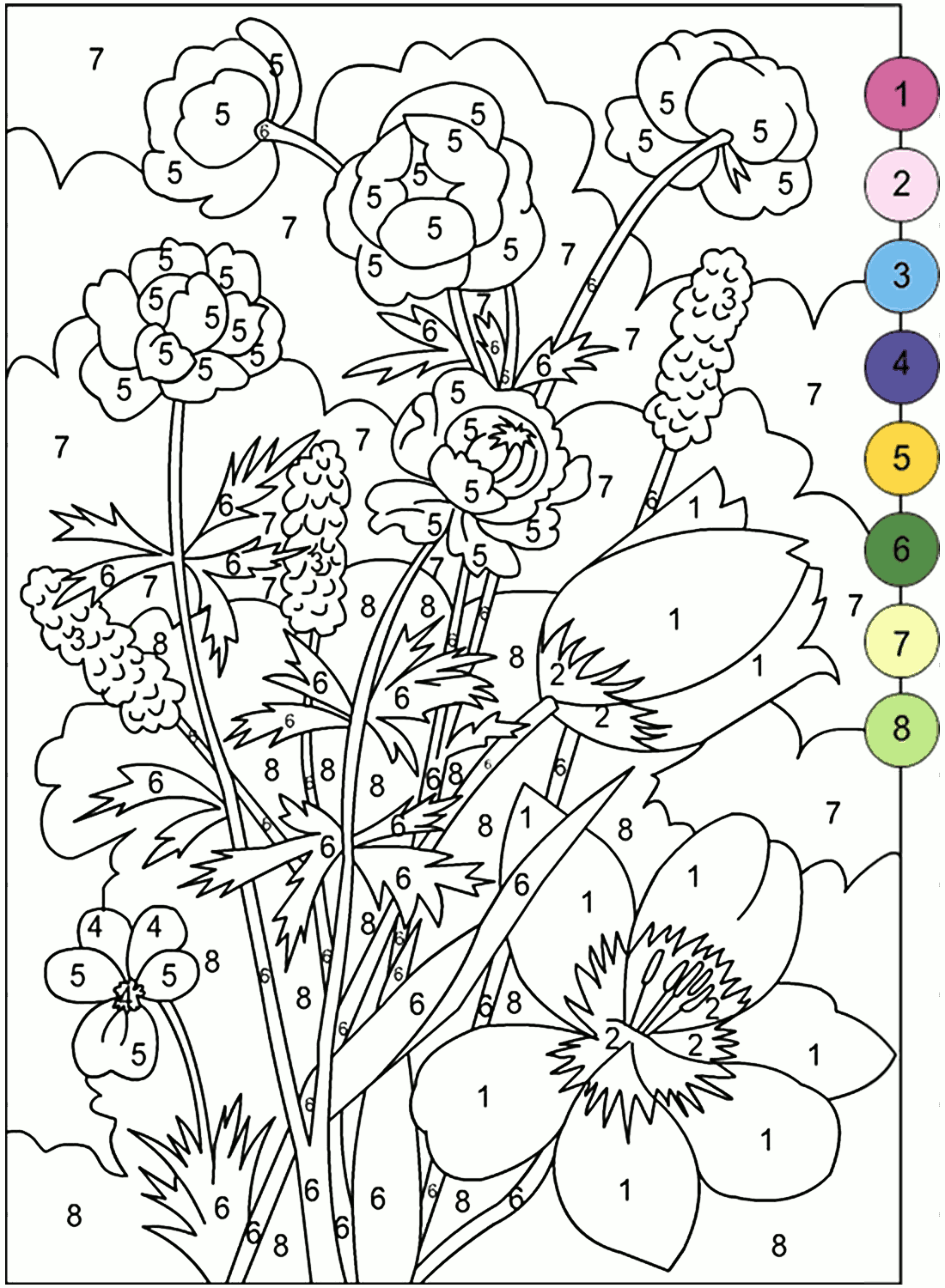 Adult Color by Number Books | AdultcoloringbookZ