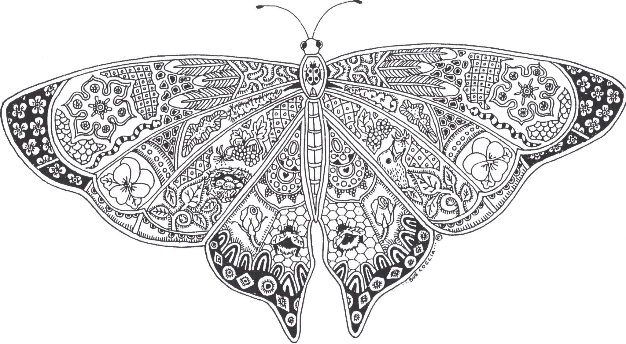 butterfly coloring pages 6