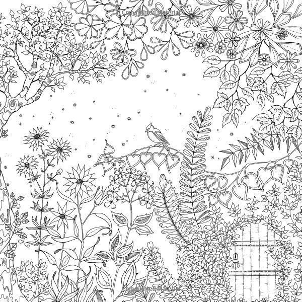 Forest Coloring Book Adultcoloringbookz