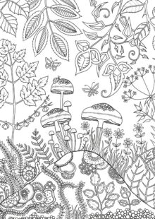 forest coloring pages 7